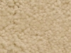 BLANCHED ALMOND carpet color